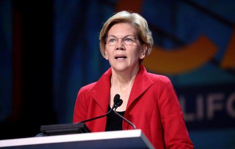 Democratic candidate Elizabeth Warren.