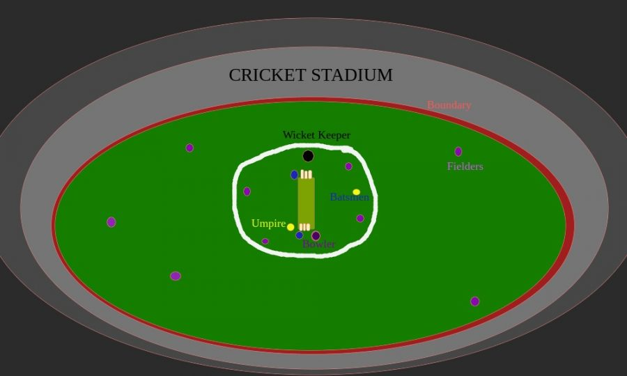 Add+Cricket+to+Green+Level+Sports%21