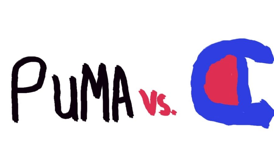 Is Puma or Champion Better?