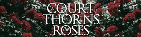"C. Andrews gives her thoughts on fantasy book, ""A Court of Thorns and Roses"""