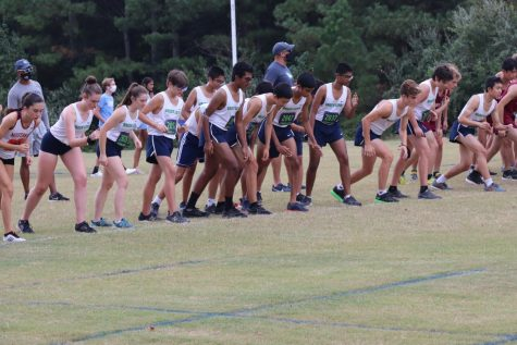 Cross Country Hits Their Stride